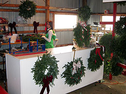 Wreaths and Christmas Decorations